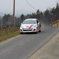 Rebenland Rallye Peugeot 207 Alois Handler