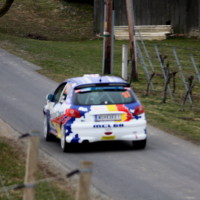 Rebenland Rallye 2013 Peugeot 206 Alfred Leitner