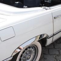 Mercedes-Benz SL Treffen 32