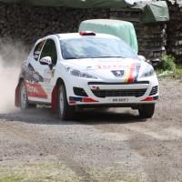 Schneebergland Rallye 2013 Alois Handler Peugeot 207 RC Andreas Scherz