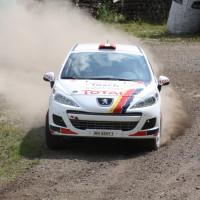 Schneebergland Rallye 2013 Alois Handler Peugeot 207 RC Staub