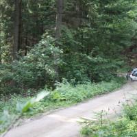 Schneebergland Rallye 2013 VW Polo Kris Rosenberger SP 11 Schwarzau im Gebierge
