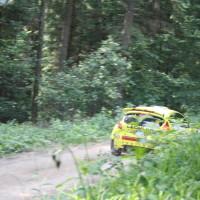 Schneebergland Rallye 2013 Ford Fiesta Start SP 11 Schwarzau