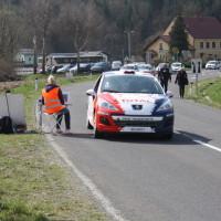 Rebenland Rallye 2014 Peugeot 207 R3T Alois Handler SP9
