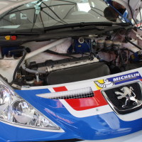 Rebenland Rallye 2014 Peugeot 207 S2000 Walter Mayer Service Motor
