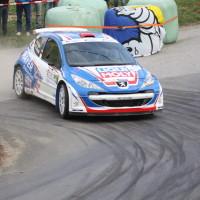 Rebenland Rallye 2014 Peugeot 207 S2000 Walter Mayer SP 12