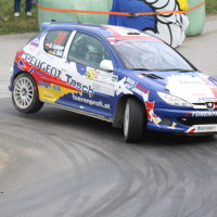 Rebenland Rallye 2014 Peugoet 206 RC Alfred Leitner SP11
