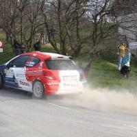 Rebenland Rallye 2014 Peugeot 207 R3T Alois Handler SP6