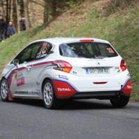 Lavanttal Rallye 2014 Peugeot 208 R2 Rok Turk SP 8