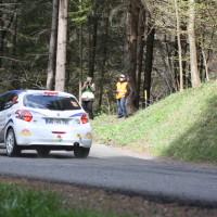 Lavanttal Rallye 2014 Peugeot 208 R2 Alan Pajk SP 8