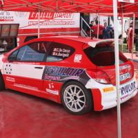 Lavanttal Rallye 2014 Peugeot 208 T16 R5 Claudio de Cecco Service