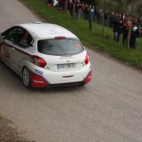 Lavanttal Rallye 2014 Peugeot 208 R2 Rok Turk SP 5