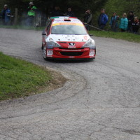 Lavanttal Rallye 2014 Peugeot 208 T16 R5 Claudio de Cecco SP 5