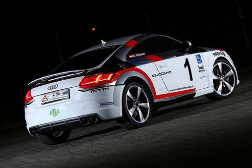 Audi TT Rallye Behindertengerecht Reini Sampl
