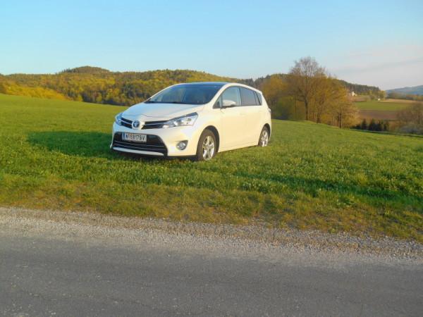 Toyota Verso in der Wiese