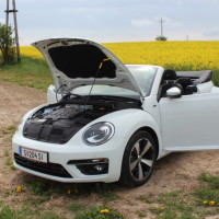 VW Beetle Cabriolet 26