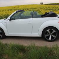 VW Beetle Cabriolet 55
