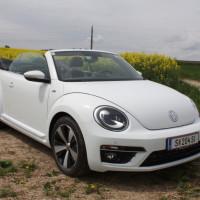 VW Beetle Cabriolet 62